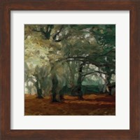 Cinnamon Forest 2 Fine Art Print