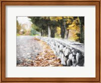 Leaves On The Road Fine Art Print