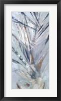 Grey Palms IV Fine Art Print
