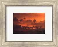 luc Manaud - Oasis de Fachi, Niger Fine Art Print