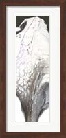 Obsidian Fine Art Print