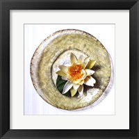 Lotus Flower Fine Art Print