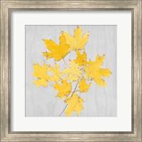 Autumn Leaves VII Fine Art Print
