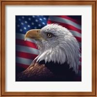 American Bald Eagle Fine Art Print