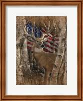 Whitetail Buck America Fine Art Print