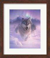 Running Wolves - Northern Lights Fine Art Print