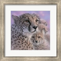 Cheetah Mother and Cubs - Mother's Love - Square Fine Art Print