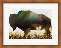 Roaming the Plains Fine Art Print