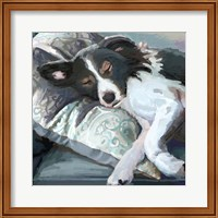 Couch Collie Fine Art Print