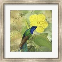 Hummingbird Green Blue Fine Art Print