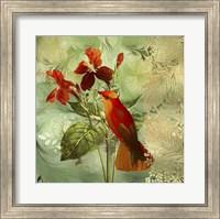Hummingbird Red Fine Art Print