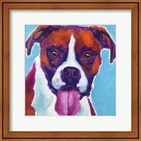 Boxer - Lucy Fine Art Print