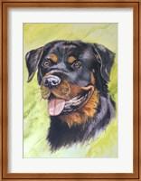 Rotty Dog 1 Fine Art Print