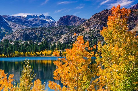 Framed Golden Fall Landscape At June Lake Print
