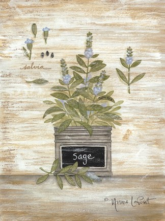 Framed Sage Botanical Print