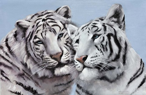 Framed Loving White Tigers Print