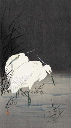 Framed Two Egrets in the Reeds, 1900-1930 Print