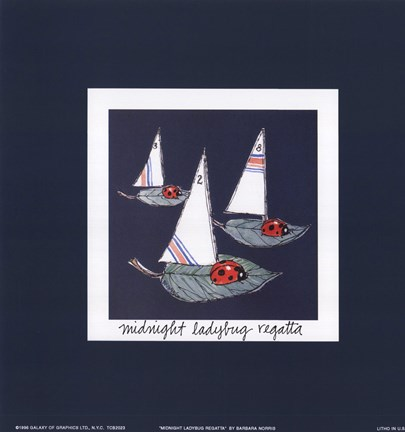 Framed Midnight Ladybug Regatta Print