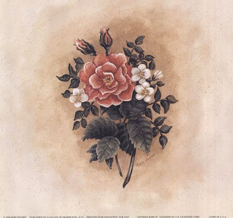 Framed Antique Rose II Print