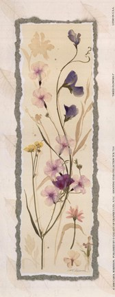 Framed Dried Flowers I Print