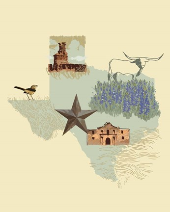 Framed Illustrated State-Texas Print