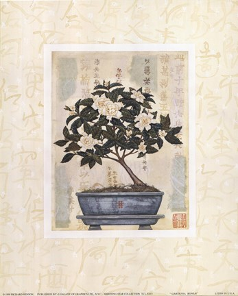 Framed Gardenia Bonsai Print