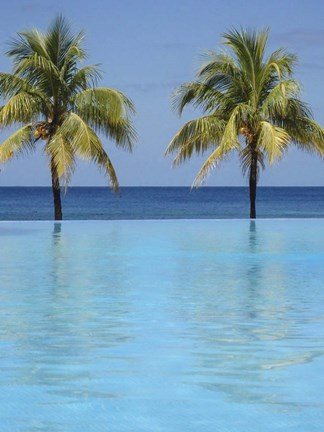 Framed Infinity Pool Surrounded By Palm Trees Print