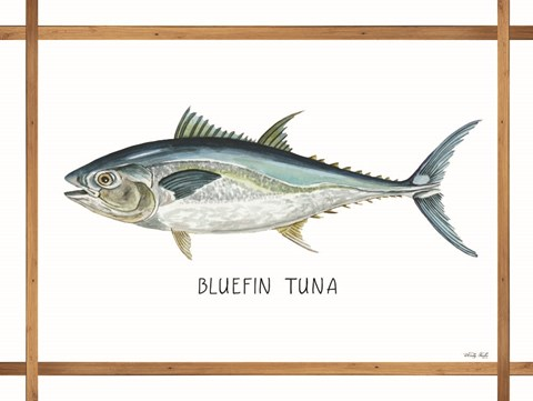 Framed Bluefin Tuna on White Print
