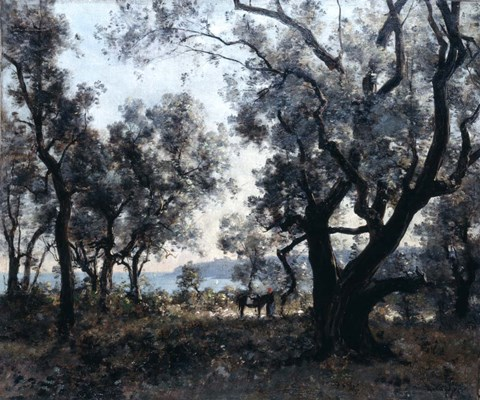 Framed Olive Trees around Cap Martin, 1891 Print