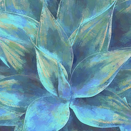 Framed Agave Forms III Print