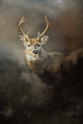 Framed Buck In The Moonlight Print