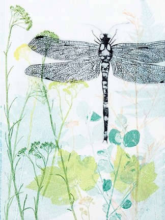 Framed Dragonfly And The Healing Plant Print