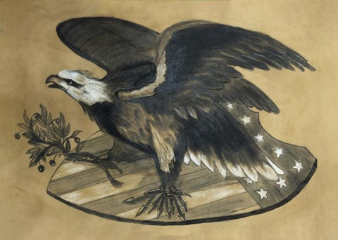 Framed Antique Eagle Print