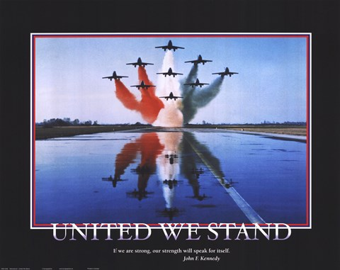Framed Patriotic-United We Stand Print