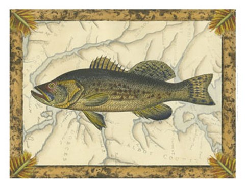 Framed Black Bass on Map Print