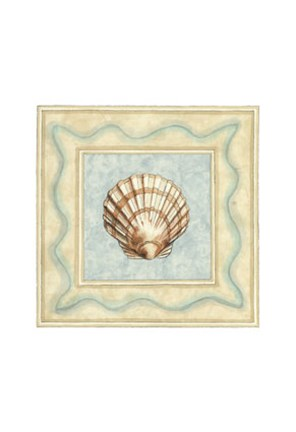 Framed Shell Collector IV Print