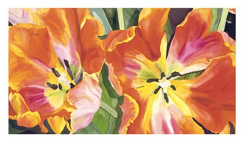 Framed Two Parrot Tulips Print