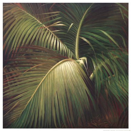 Framed Tropical Seclusion Print