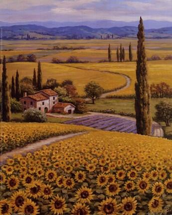 Sunflower field fine art print by sung kim at for Disegni di paesaggi colorati