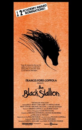 Framed Black Stallion Print
