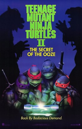 Framed Teenage Mutant Ninja Turtles 2 Print