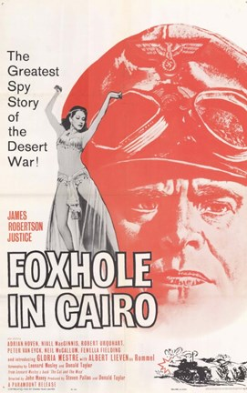 Framed Foxhole in Cairo Print