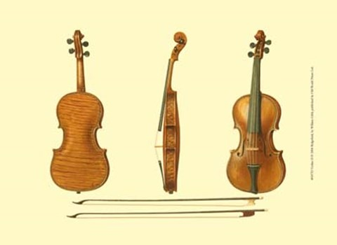 Framed Antique Violins II Print