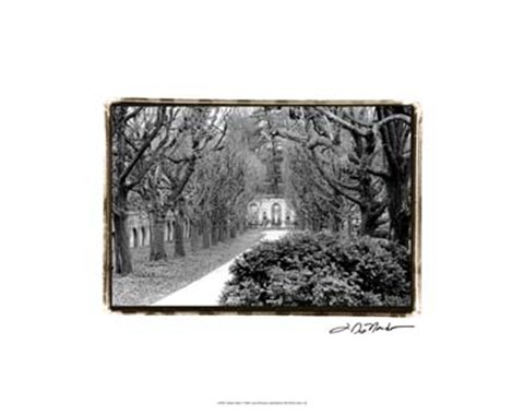 Framed Garden Walk Print