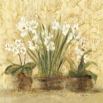 Framed Esprit Narcissus and Orchid 18x18 Print