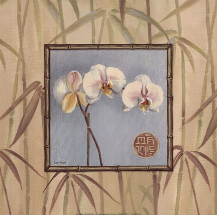 Framed Orchid Spa III Print
