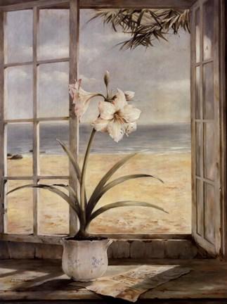 Ocean Amaryllis Fine Art Print by Fabrice De Villeneuve at ...