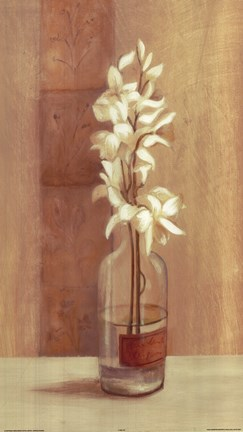 Framed White Flower In Bottle Print