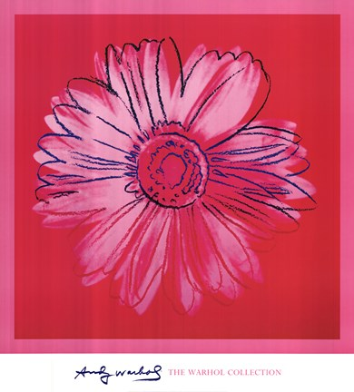 Daisy (crimson and pink) by Andy Warhol