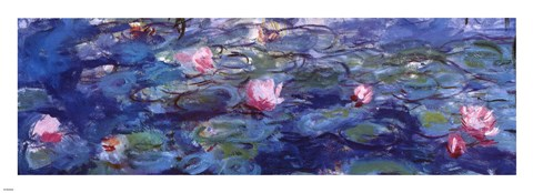 Framed Water Lilies (blue and purple) Print
